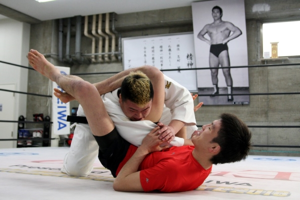 Shinya Aoki locking a triangle choke on Atsushi Sawada at New Japan Pro-Wrestling dojo, in front of the founder Antonio Inoki's photo.